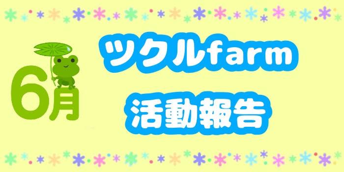 6月☆ツクルfarmの活動報告