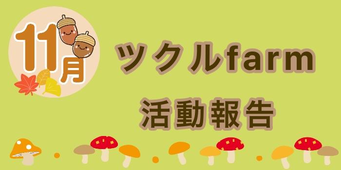 11月☆ツクルfarmの活動報告