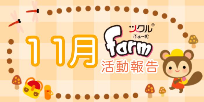 11月☆ツクルfarm活動報告